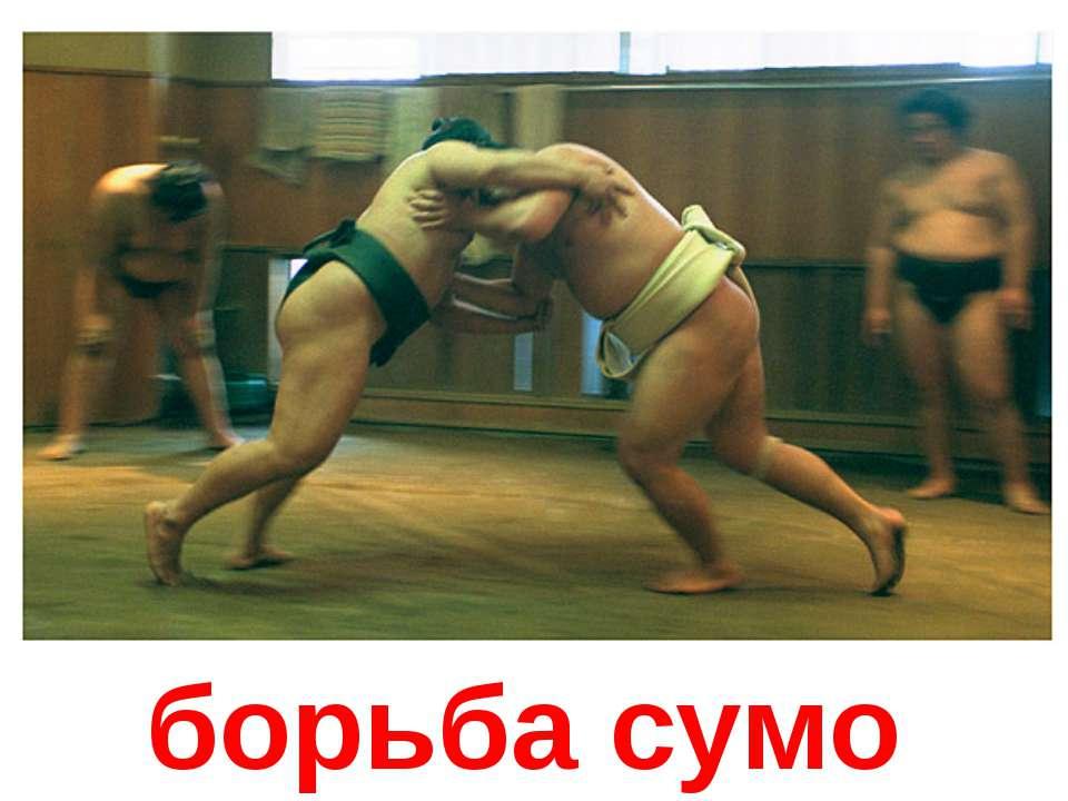борьба сумо