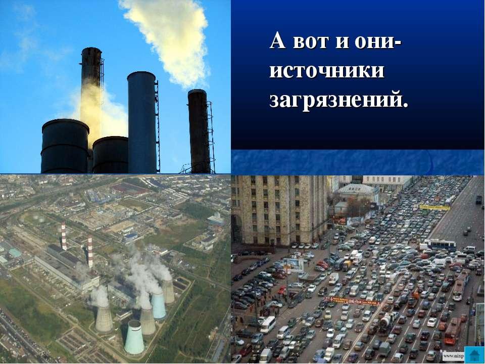 А вот и они- источники загрязнений.