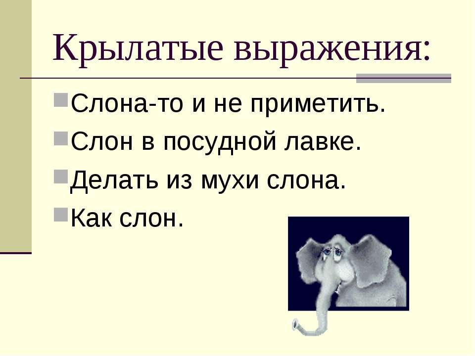 Крылатые выражения: Слона-то и не приметить. Слон в посудной лавке. Делать из...