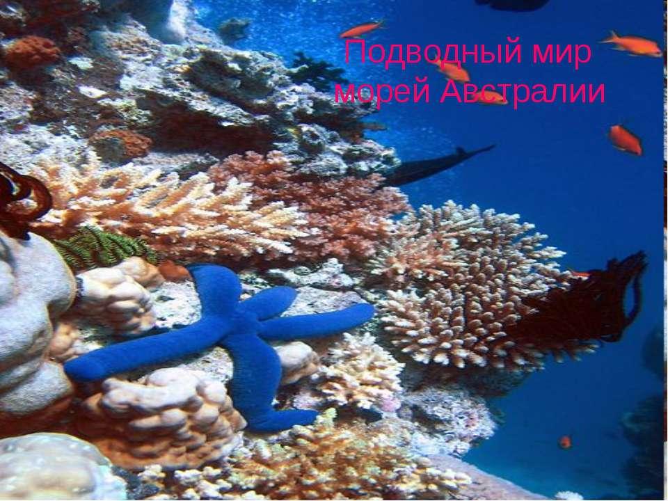 Подводный мир морей Австралии