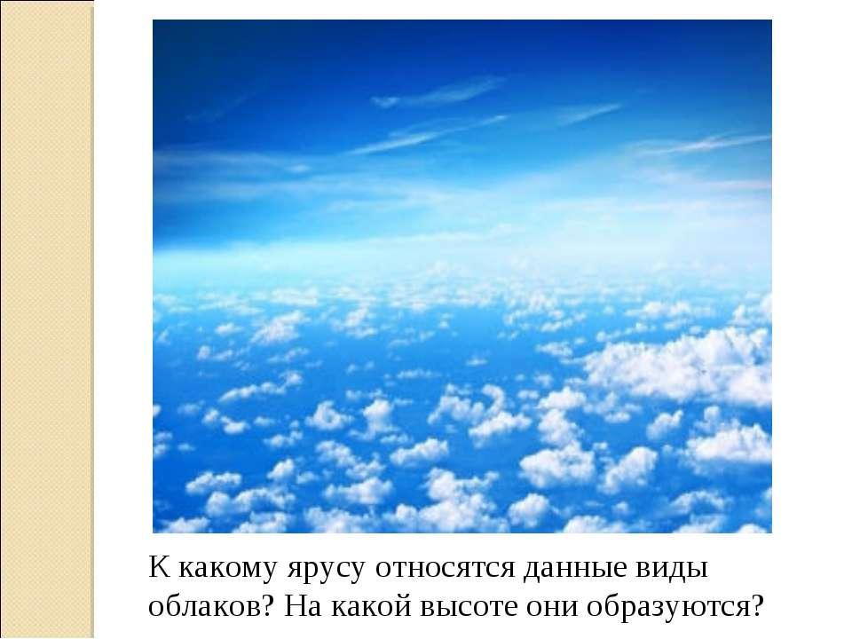 К какому ярусу относятся данные виды облаков? На какой высоте они образуются?