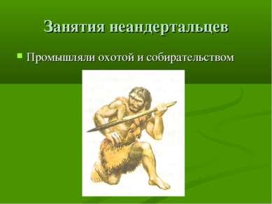 Занятия неандертальцев Промышляли охотой и собирательством