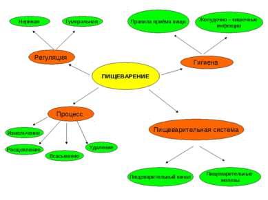 ПИЩЕВАРЕНИЕ Процесс Измельчение Расщепление Всасывание Удаление Пищеварительн...