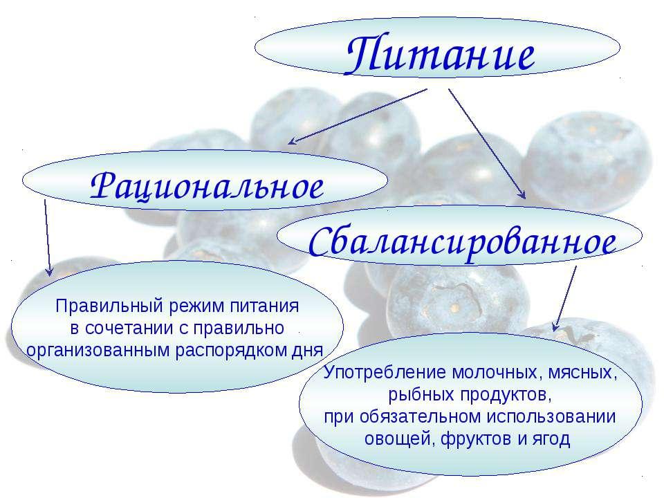 Питание Сбалансированное Рациональное Правильный режим питания в сочетании с ...