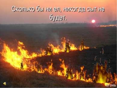 Сколько бы ни ел, никогда сыт не будет. огонь