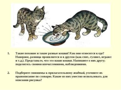 Такие похожие и такие разные кошки! Как они относятся к еде? Наверное, разниц...