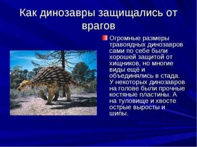 Как динозавры защищались от врагов Огромные размеры травоядных динозавров сам...