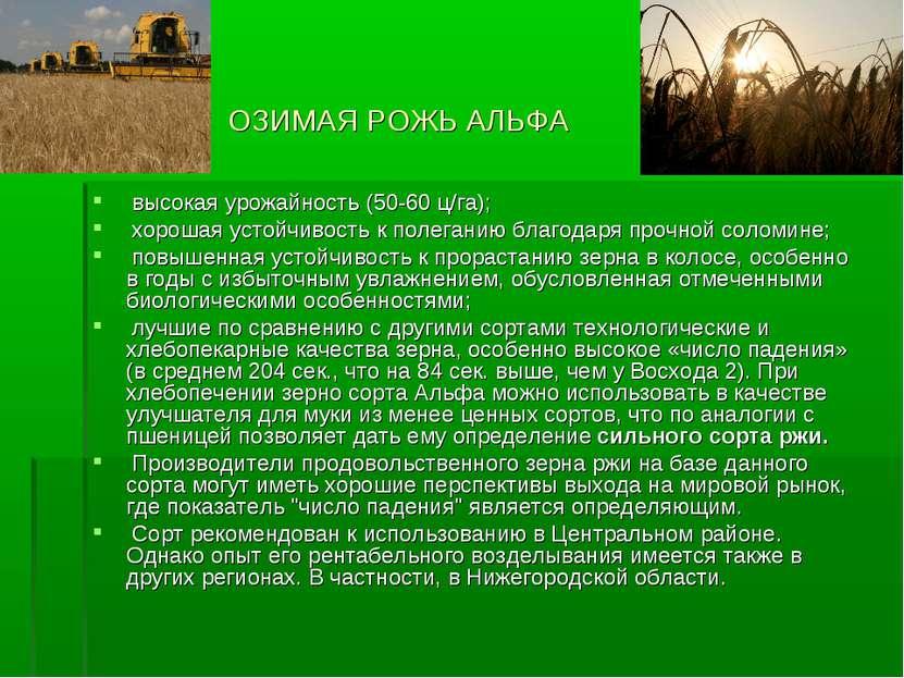 ОЗИМАЯ РОЖЬ АЛЬФА высокая урожайность (50-60 ц/га); хорошая устойчивость к по...