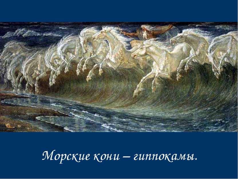 Морские кони – гиппокамы.