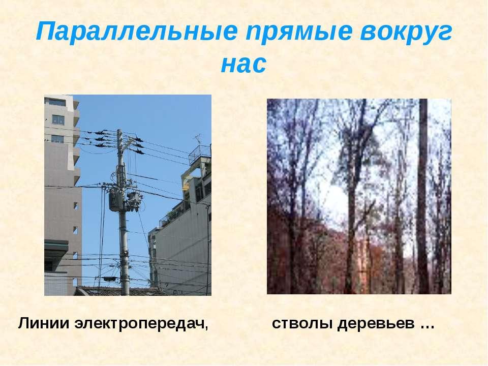 Параллельные прямые вокруг нас Линии электропередач, стволы деревьев …