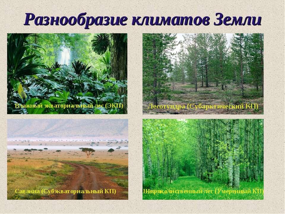Разнообразие климатов Земли Лесотундра (Субарктический КП) Влажный экваториал...