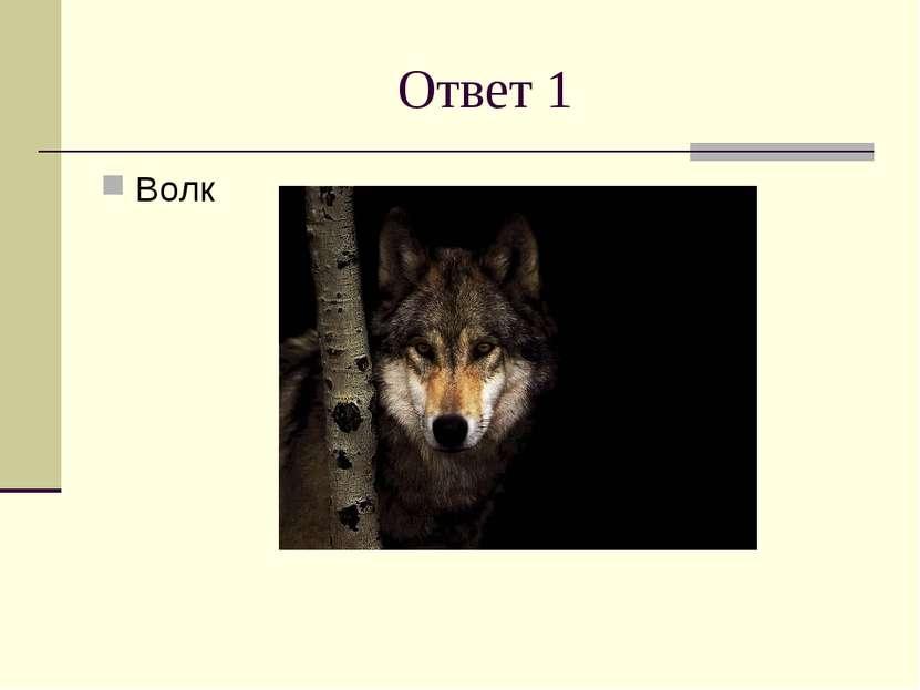 Ответ 1 Волк