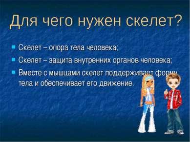 Скелет – опора тела человека; Скелет – защита внутренних органов человека; Вм...