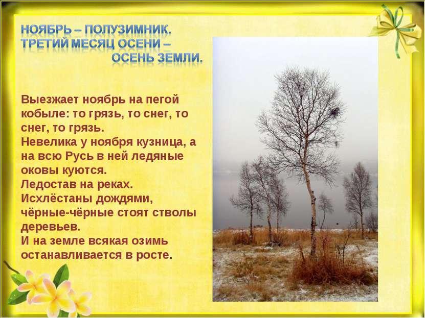 Выезжает ноябрь на пегой кобыле: то грязь, то снег, то снег, то грязь. Невели...