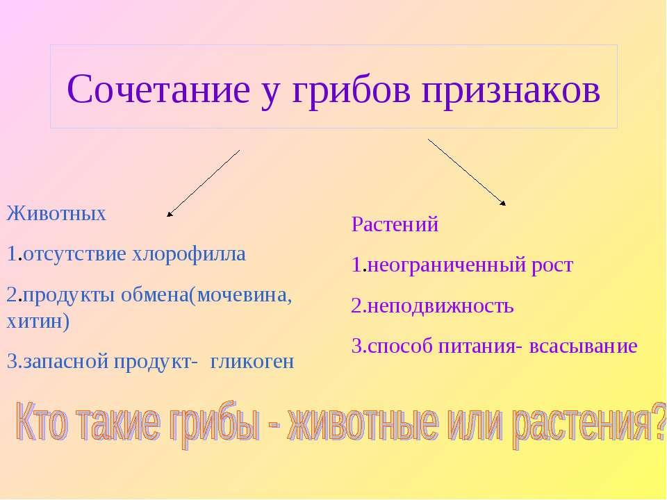 Сочетание у грибов признаков Животных 1.отсутствие хлорофилла 2.продукты обме...