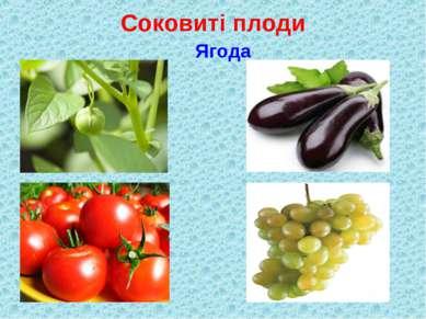 Соковиті плоди Ягода