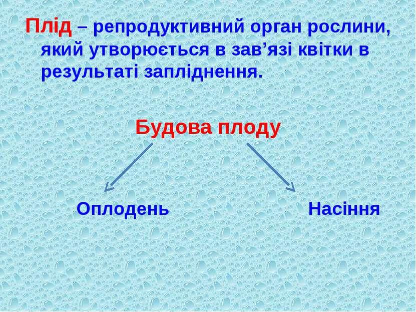 Плід – репродуктивний орган рослини, який утворюється в зав'язі квітки в резу...