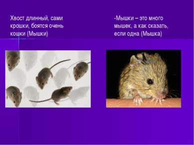 Хвост длинный, сами крошки, боятся очень кошки (Мышки) -Мышки – это много мыш...