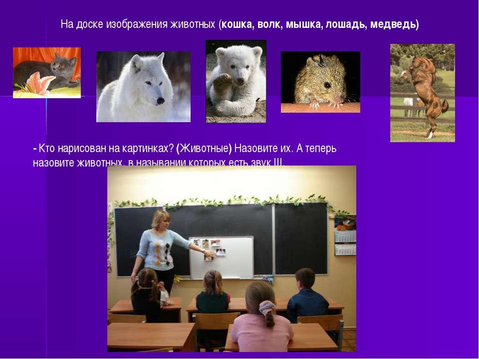 На доске изображения животных (кошка, волк, мышка, лошадь, медведь) - Кто нар...