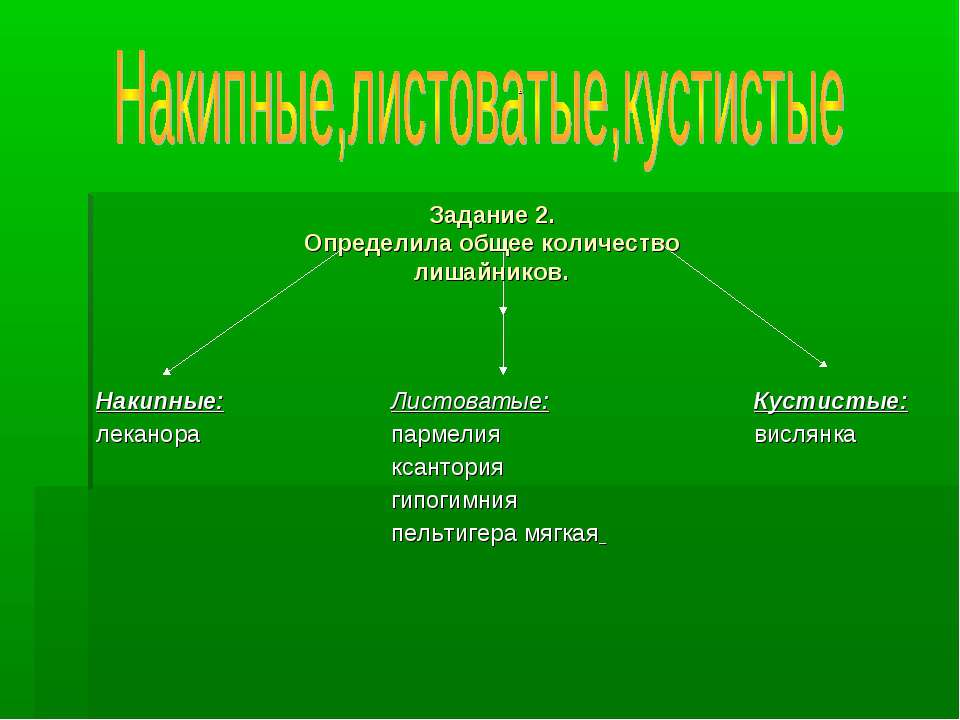 . Задание 2. Определила общее количество лишайников. Листоватые: пармелия кса...