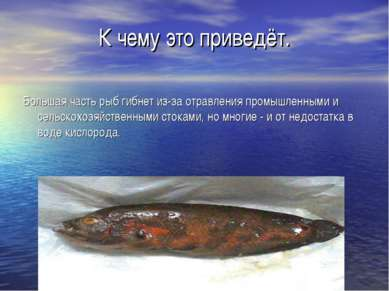 К чему это приведёт. Большая часть рыб гибнет из-за отравления промышленными ...