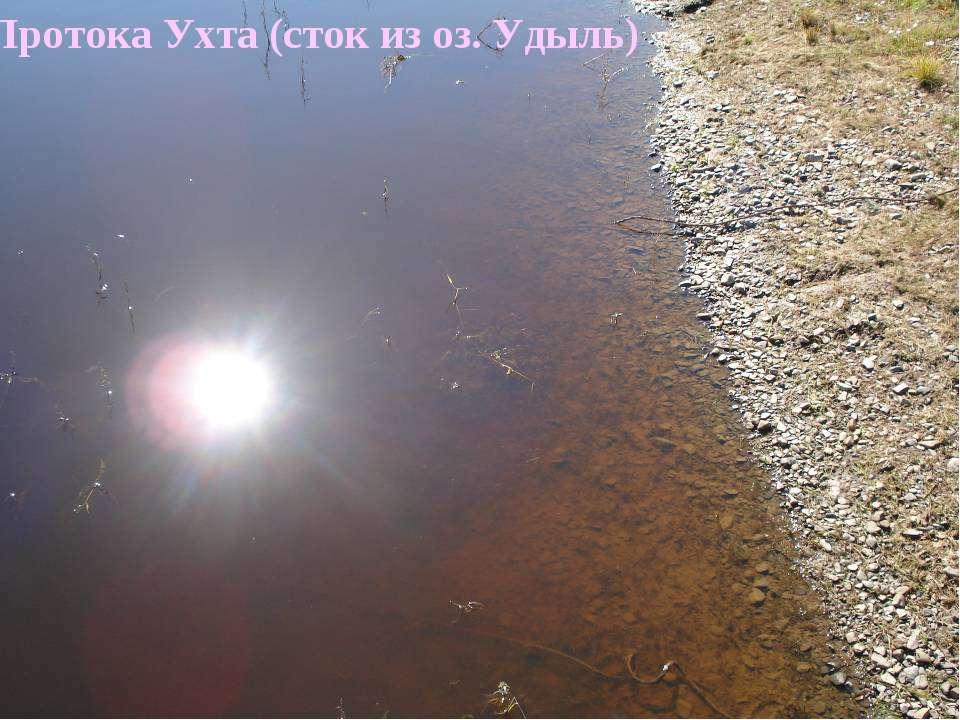 Протока Ухта (сток из оз. Удыль)