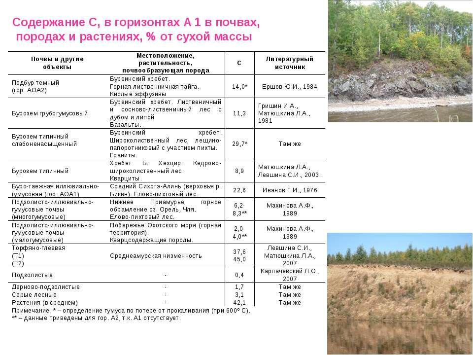Содержание С, в горизонтах А 1 в почвах, породах и растениях, % от сухой массы