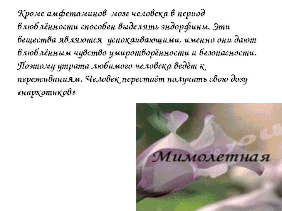 Кроме амфетаминов мозг человека в период влюблённости способен выделять эндор...