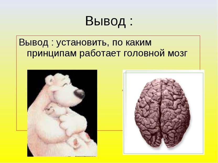 Вывод : установить, по каким принципам работает головной мозг ? Вывод :