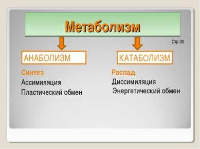 Метаболизм Распад Диссимиляция Энергетический обмен Синтез Ассимиляция Пласти...