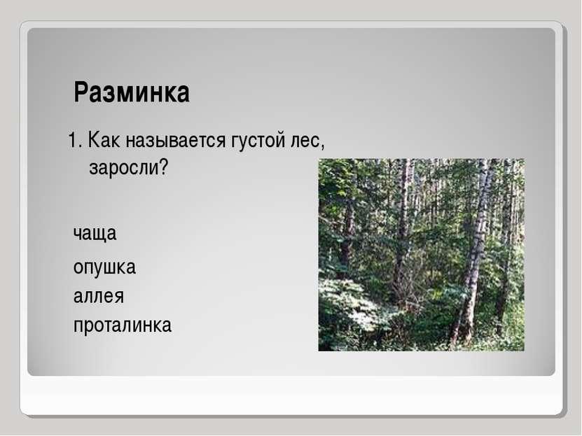Разминка опушка аллея проталинка 1. Как называется густой лес, заросли? чаща