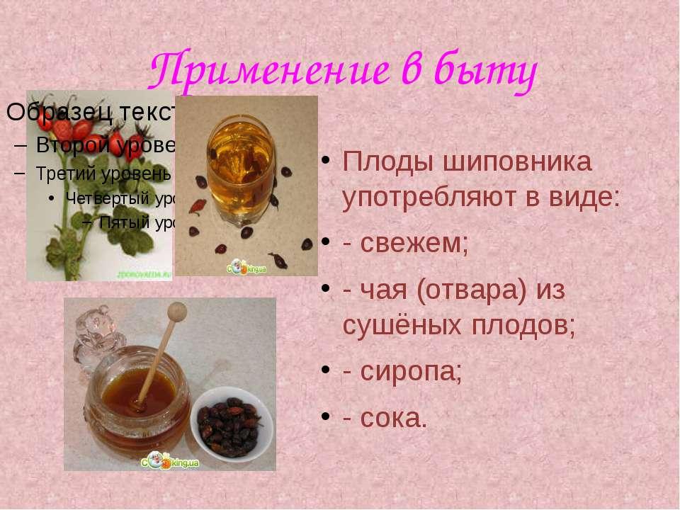 Применение в быту Плоды шиповника употребляют в виде: - свежем; - чая (отвара...