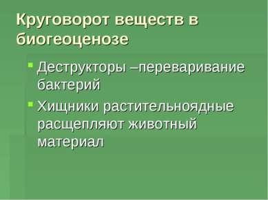Круговорот веществ в биогеоценозе Деструкторы –переваривание бактерий Хищники...