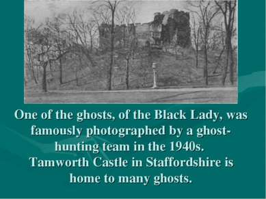 One of the ghosts, of the Black Lady, was famously photographed by a ghost-hu...
