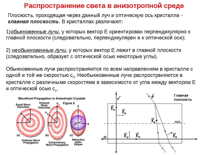 Плоскость, проходящая через данный луч и оптическую ось кристалла - главная п...