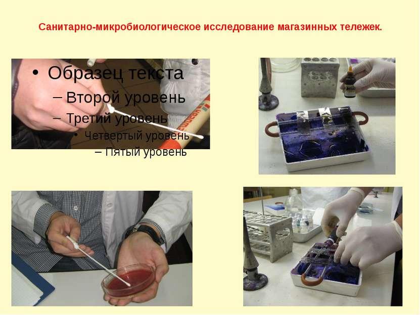 Санитарно-микробиологическое исследование магазинных тележек.