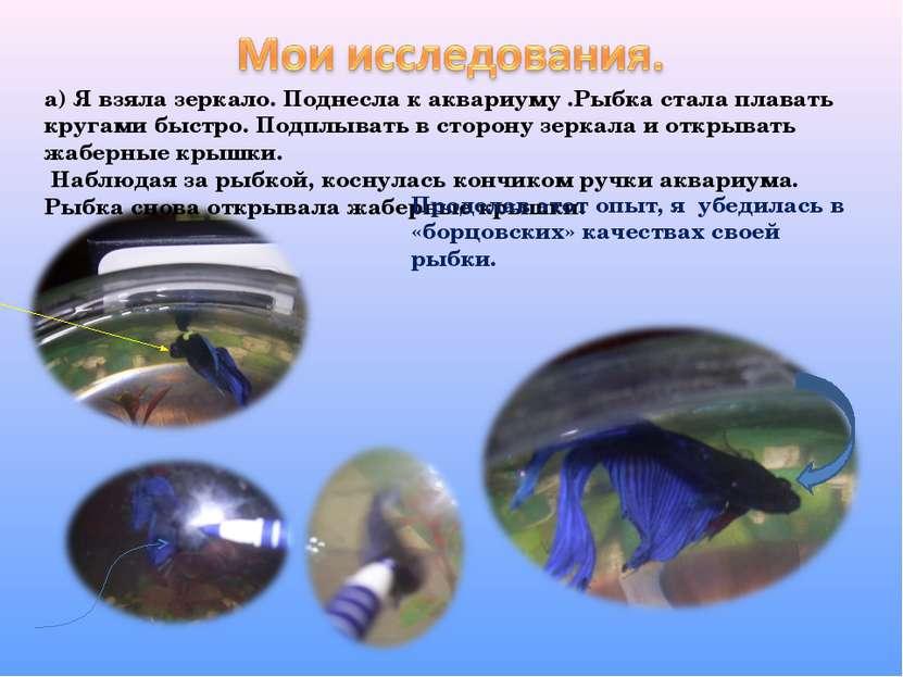 а) Я взяла зеркало. Поднесла к аквариуму .Рыбка стала плавать кругами быстро....