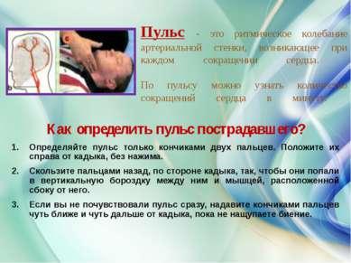Пульс - это ритмическое колебание артериальной стенки, возникающее при каждом...