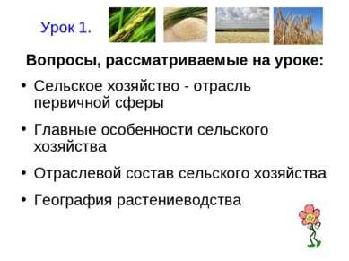 Вопросы, рассматриваемые на уроке: Сельское хозяйство - отрасль первичной сфе...