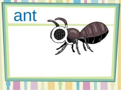 Aa ant