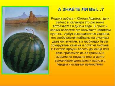 Родина арбуза – Южная Африка, где и сейчас в Калахари это растение встречаетс...