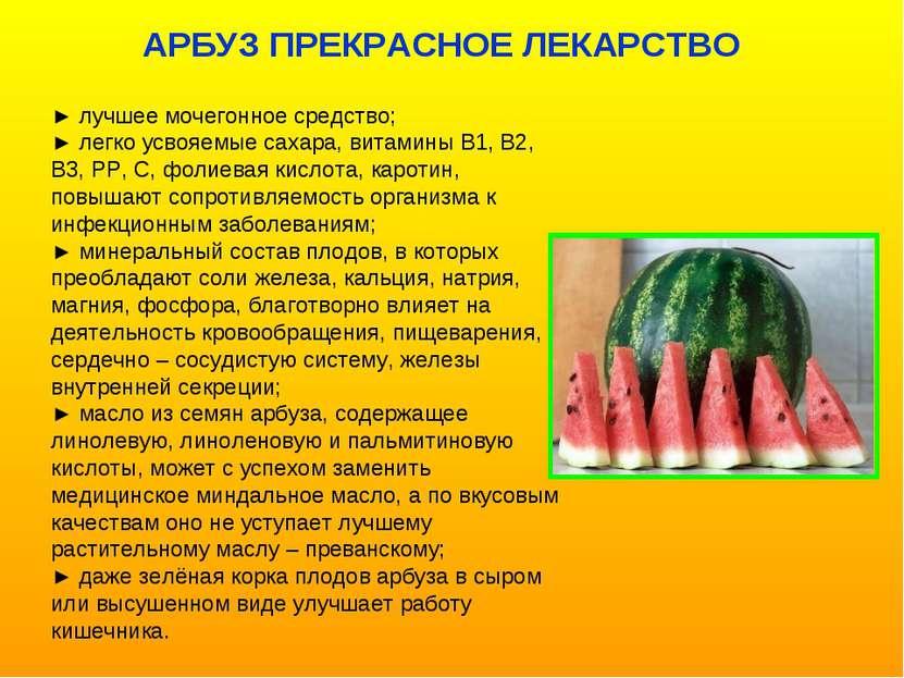 ► лучшее мочегонное средство; ► легко усвояемые сахара, витамины В1, В2, В3, ...