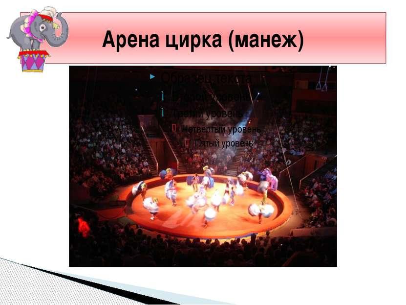Арена цирка (манеж)