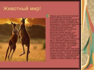 Животный мир! Открыть для себя неповторимый животный мир Австралии. Благодаря...