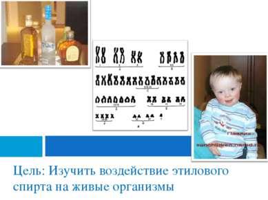 Цель: Изучить воздействие этилового спирта на живые организмы