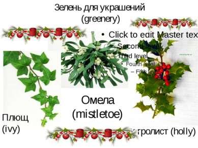 Зелень для украшений (greenery) Остролист (holly) Омела (mistletoe) Плющ (ivy)