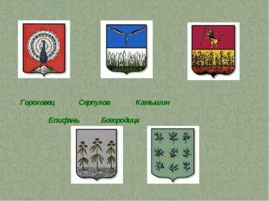Гороховец Серпухов Камышин Епифань Богородицк