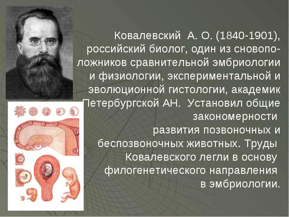 Ковалевский А. О. (1840-1901), российский биолог, один из сновопо- ложников с...