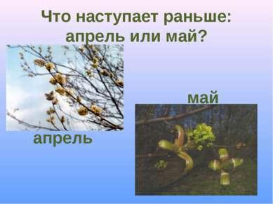 Что наступает раньше: апрель или май? апрель май