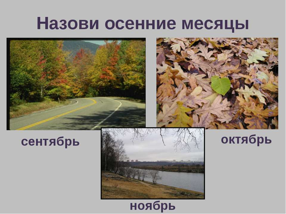Назови осенние месяцы сентябрь октябрь ноябрь